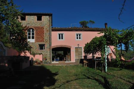 La Torre degli Asinelli - Matraia - House