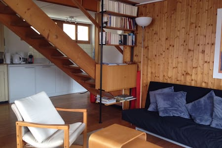 5 rooms Swiss wooden Chalet in Laax - Laax - Maison