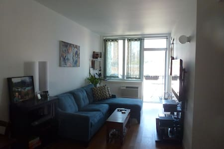 Brand new apt close to Central Park