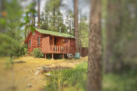 Idyllwild Passion Cabin