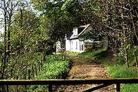 Bar Hill Lodge - secluded cottage - Gatehouse of Fleet - Hus