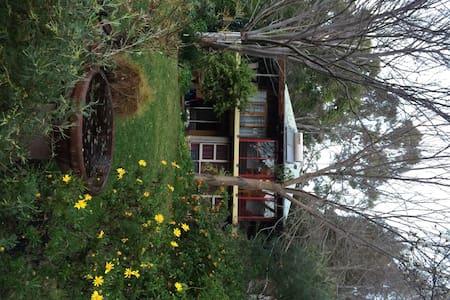 Woodbine Lodge Country Retreat - Bed & Breakfast