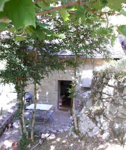 maison typique Lozerienne - House