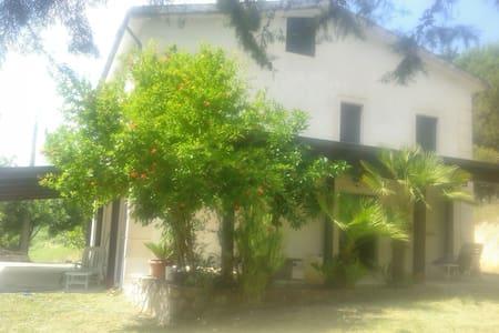 Casolare di campagna meraviglioso - Ailano - House