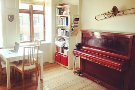 2 room appartment in central CPH