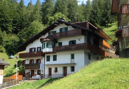 Dolomites (UNESCO) relax in nature - Wohnung