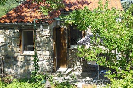 Gite pour 2 au coeur des Cevennes - Bréau-et-Salagosse - Dům