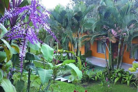 Habitacion con Vista Volcan Arenal