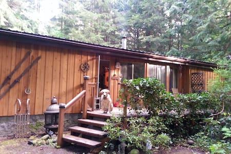 Cozy Mt. Baker Getaway Cabin - Cottage