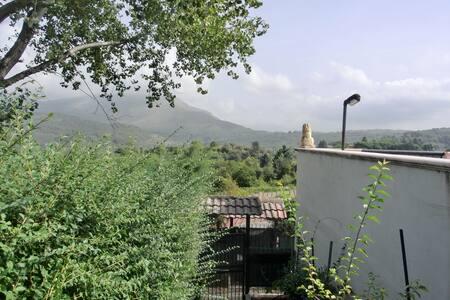 Fittasi villetta ammobiliata - Le Querce - Townhouse