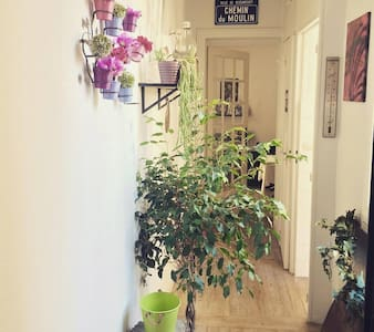 New lovely apartment in Paris