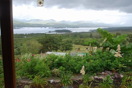 Cosy wheatfield - Kenmare - Apartment