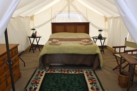 King Bed or 4 Twin - Yellowstone - West Yellowstone - Tent