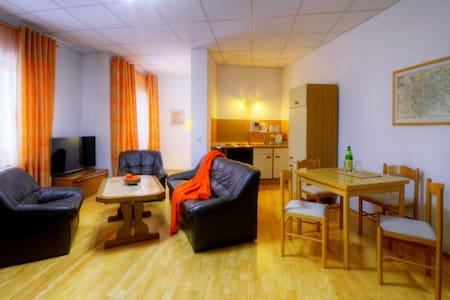 Haus Repin Ferienwohnung 1 - Oberhof - Appartement