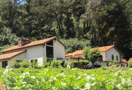 Bay Area  Private Room in Working Winery - Castro Valley - Villa