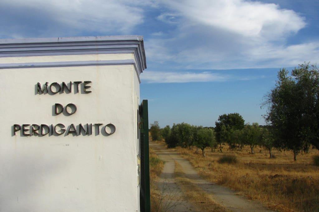 Monte do Perdiganito Rural Tourism1