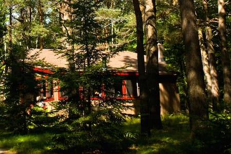 Peaceful Adirondack Cabin - Ház