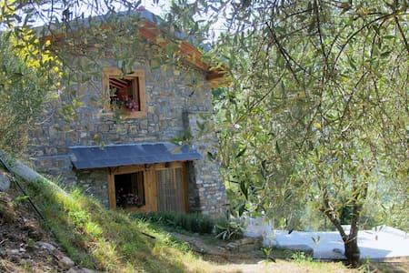 Country House Fronté nell' uliveto - Pieve di Teco