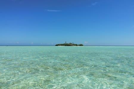 Madivaru Island - Rasdhoo - Apartment