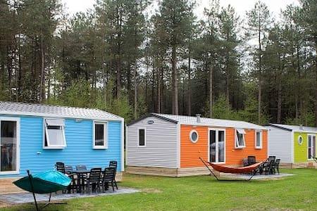 Happy Lodge Blauw op Recreatiepark 't Zand - Alphen - Other