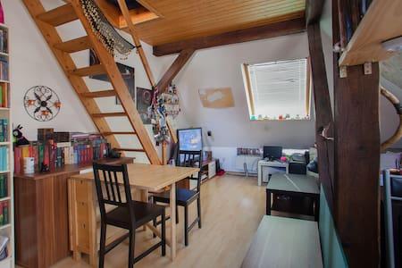 kuscheliges DG- Zimmer in Messenähe - Wohnung