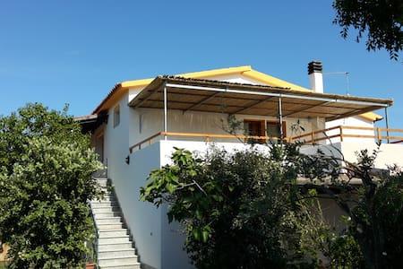 Indimenticabile SanTeodoro vacanze - House