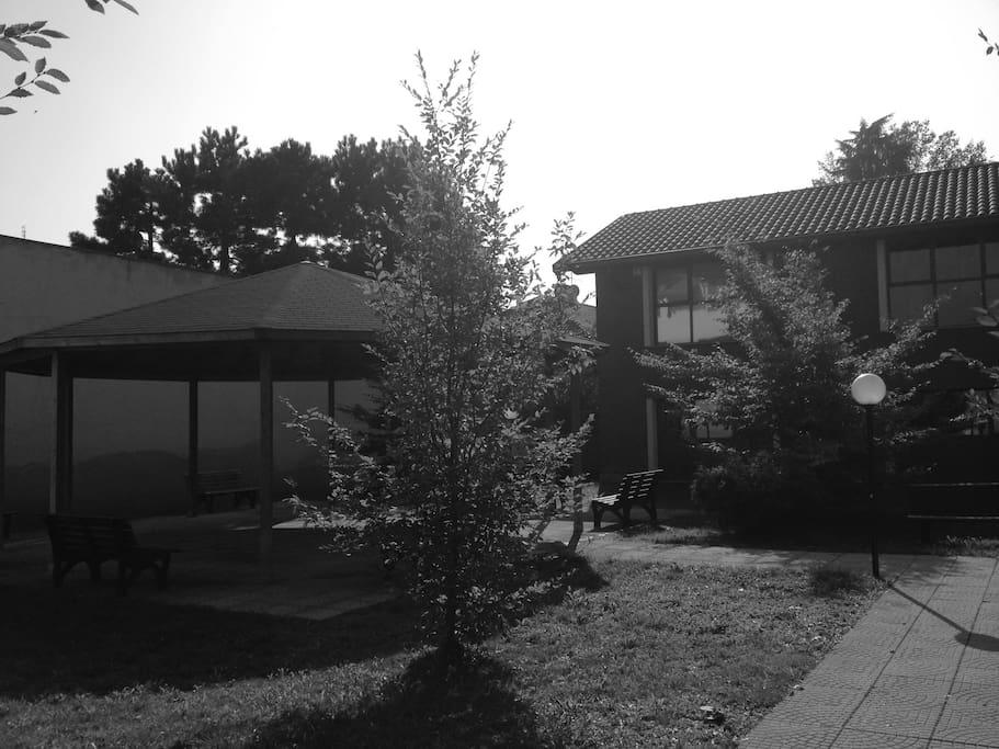 exterior garden view