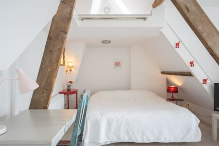 Light attic with lovely roof garden - The Hague - Bed & Breakfast