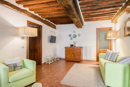 Holiday apartment situated in a typical alley in the center of Castelnuovo Berardenga in the heart of Chianti Classico , Tuscan-style residence with basement with kitchen , large living room, 2 bedrooms and 2 bathrooms , independent heating