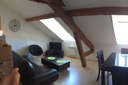 Appart confortable plein centre - Pau - Apartment