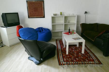 Wohnung im Souterrain - Göttingen - Casa