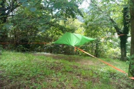 Baumzelt am Kunsthaus Stadt Wehlen - Tent