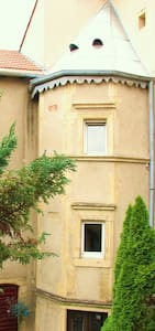 Charmant et lumineux duplex proche centre de METZ - Flat