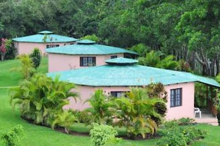 Room type: Entire home/apt Property type: Bungalow Accommodates: 4 Bedrooms: 1 Bathrooms: 1