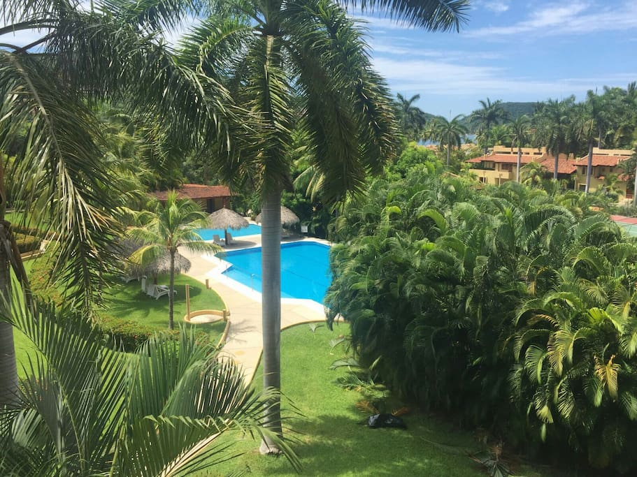Apartments For Rent Monthly Zihuatanejo