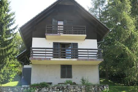 Chalet near to SKI RESORT KRVAVEC - Rumah