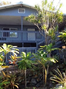 Lush Hawaiian vegetation enfold your room in quiet neighborhood. Turtle beach, marina harbor, and shopping nearby. 6 miles from the airport, only 4 turns and you're here in your Hawaiian paradise. P.S. you won't have to bring your own hair dryer.