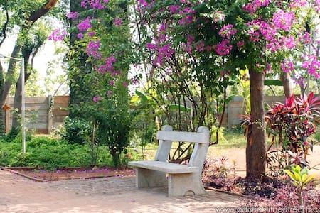 Lush Green Pondicherry Guesthouse - Autre