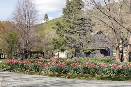 SummerHill Retreat - Chelan - Bed & Breakfast