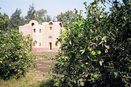 farm house - Menuf - 其它
