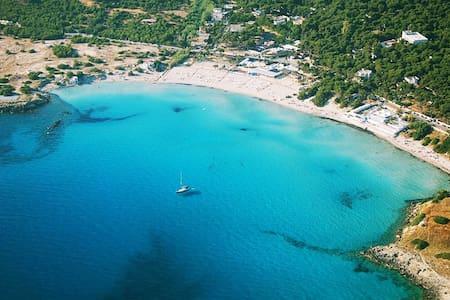 Villa nella pineta vicina al mare - Monti D'arena-bosco Caggione