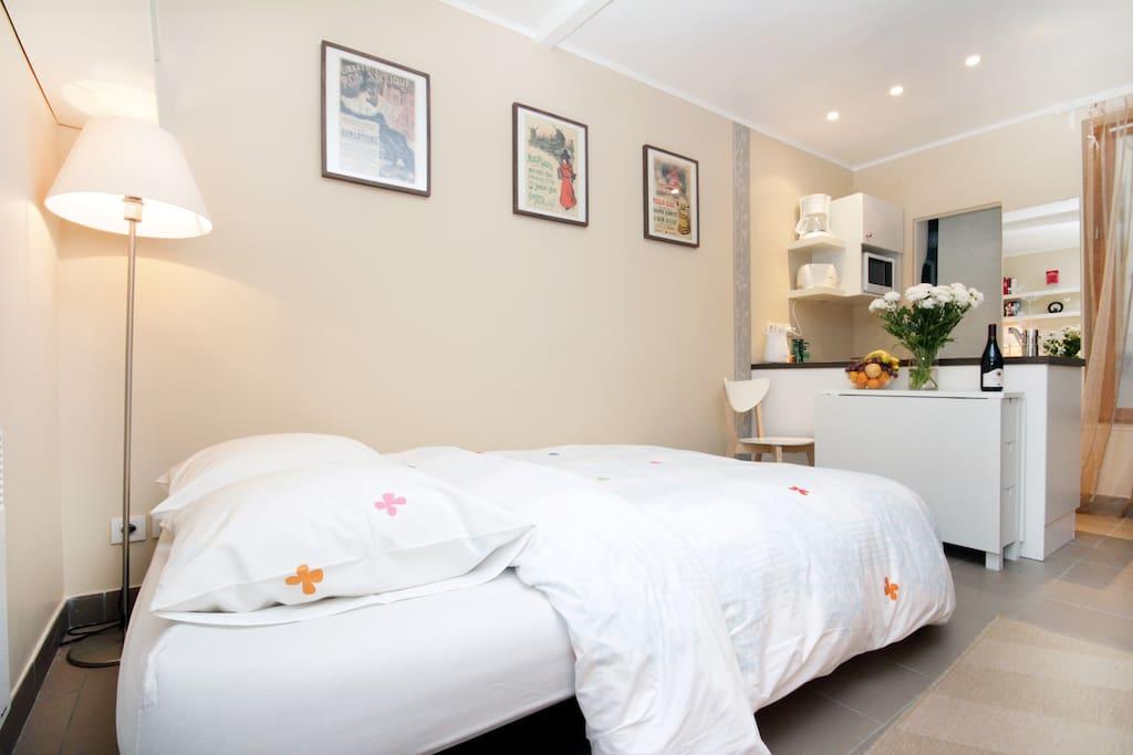 Romantic sunny studio in Montmartre