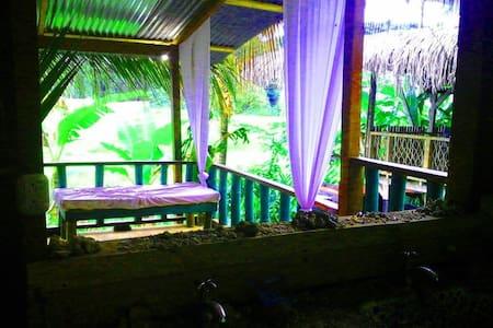 tropical puerto viejo beach area
