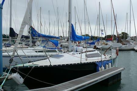Voilier Kelt 8m au ponton - Tekne