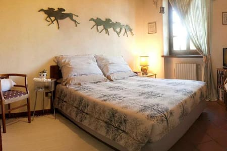 Relax nella campagna torinese  - Bed & Breakfast