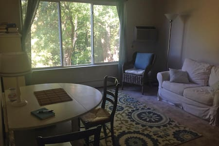 Delightful Apartment by the River - Ann Arbor - Appartamento