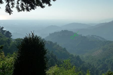 Artist's house immersed in nature - Camaiore - Bed & Breakfast