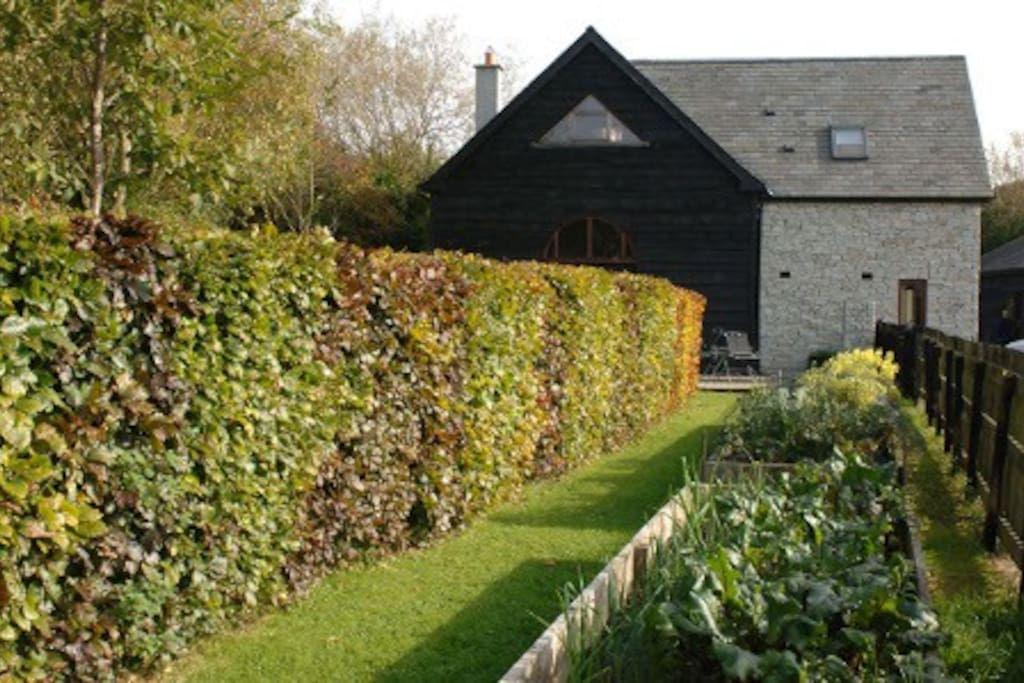 The barn from the Vegetable garden