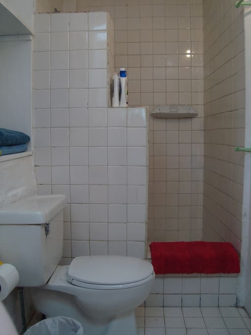 Bathroom with shower and WC.