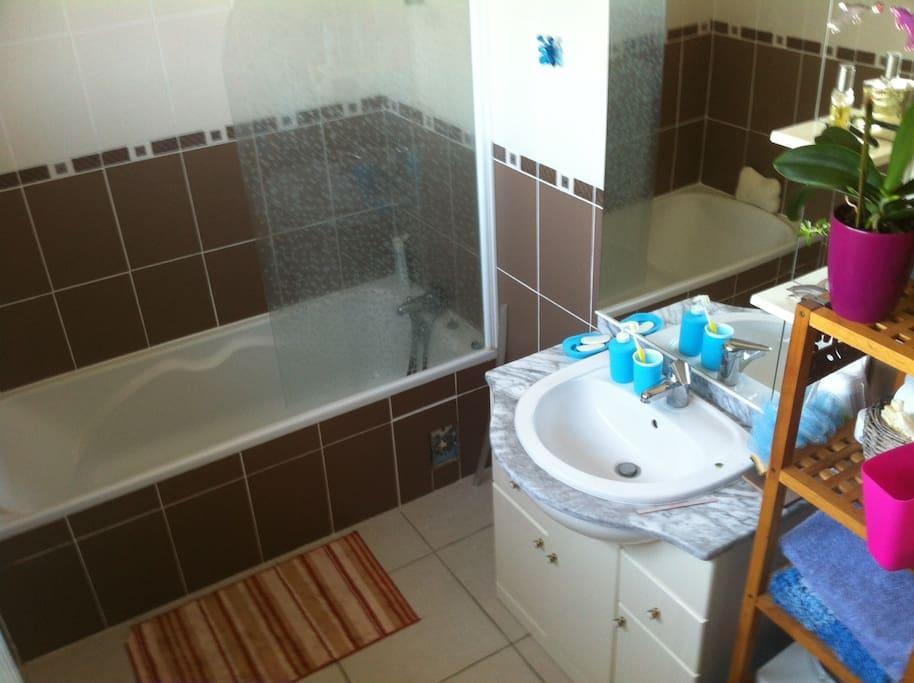 Salle de Bains et Toilettes privatives, attenantes à la chambre.